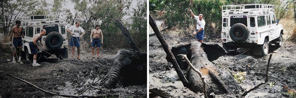 гонщики команды Lancia Martini обнаружили провалившегося в грязевое болот слона